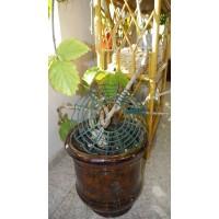 Защита на цветочный горшок Shouse (решетка-накладка от кошек) (529583)
